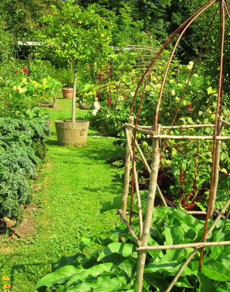 Garden big2