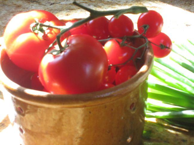 Tomates drain