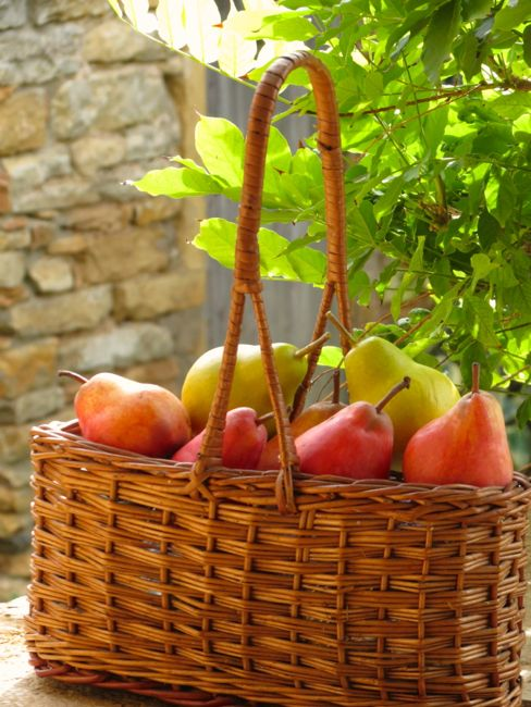 Pearsbasket